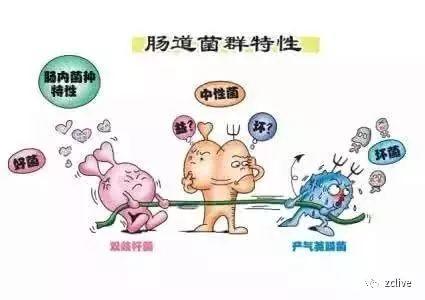 如新华茂牌益生菌固体饮料针对长痘、长斑; 口臭;尿黄、便秘有妙用!